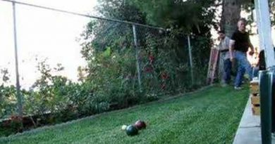bocce ball best match
