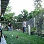 bocce ball match