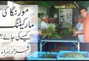 How to market moringa? Dr Shahzad basra