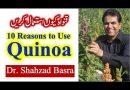 قنواہ کیوں اور کیسے استعمال کرنا چاہیئے – How and Why use Quinoa by Dr Shahzad Basra
