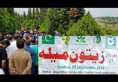 Olive festival Pakistan