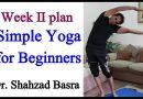 Simple Yoga for Beginners Week II plan