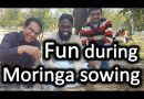 Making fun while Moringa sowing by Dr. Shahzad Basra